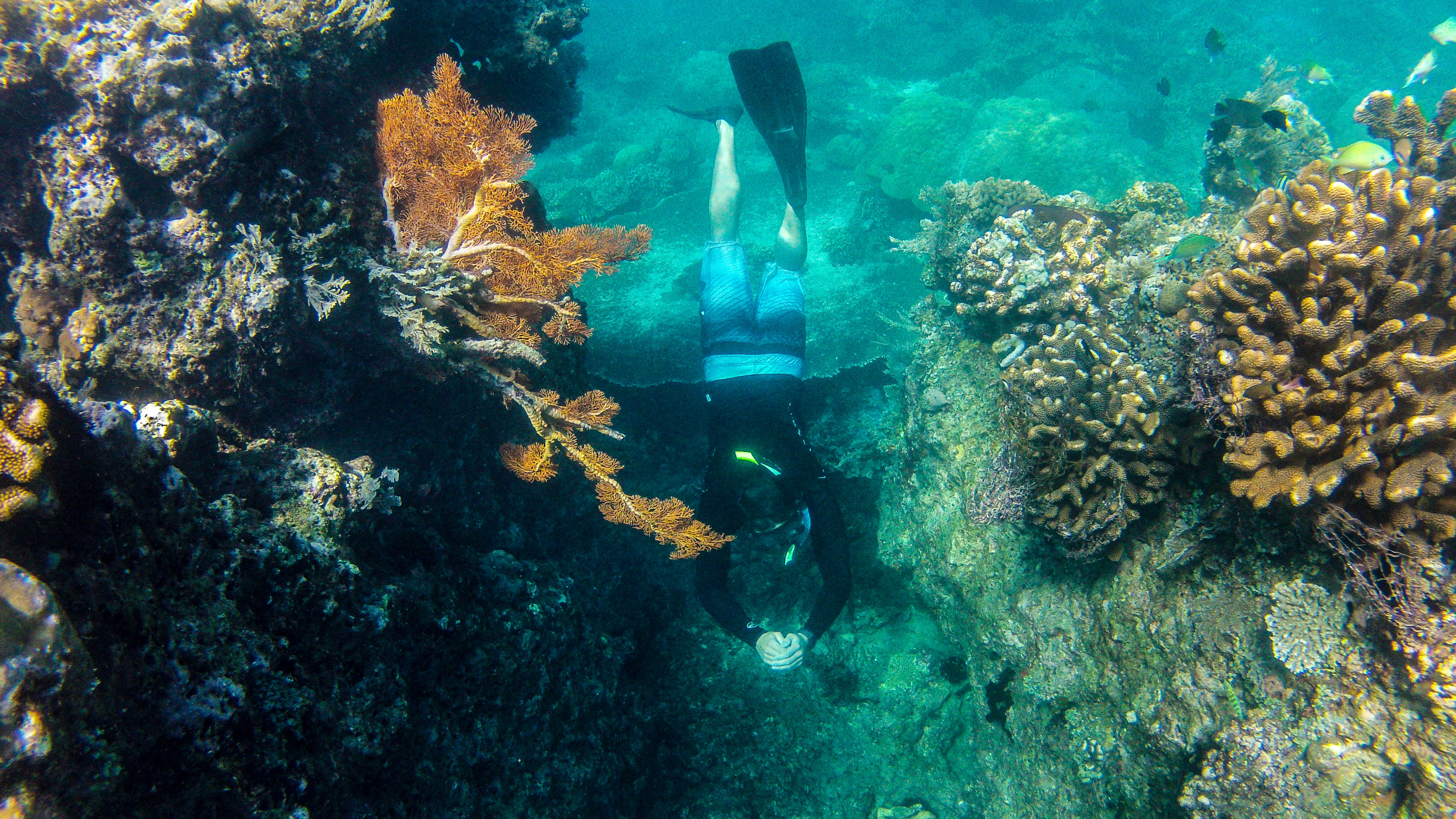 Adam Maire, Fins to Spurs, Back Underwater, Gili Trawangan, indonesia, Cave exploration