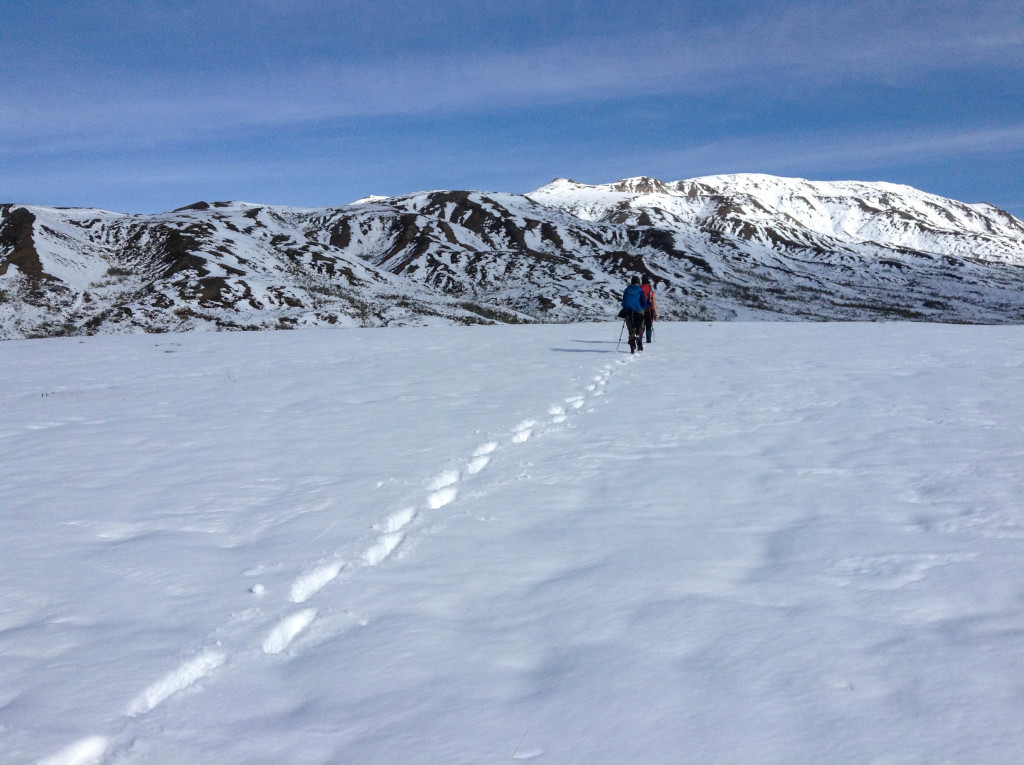 fins to spurs, diner with traverler, alaska, walking in the snow, denali