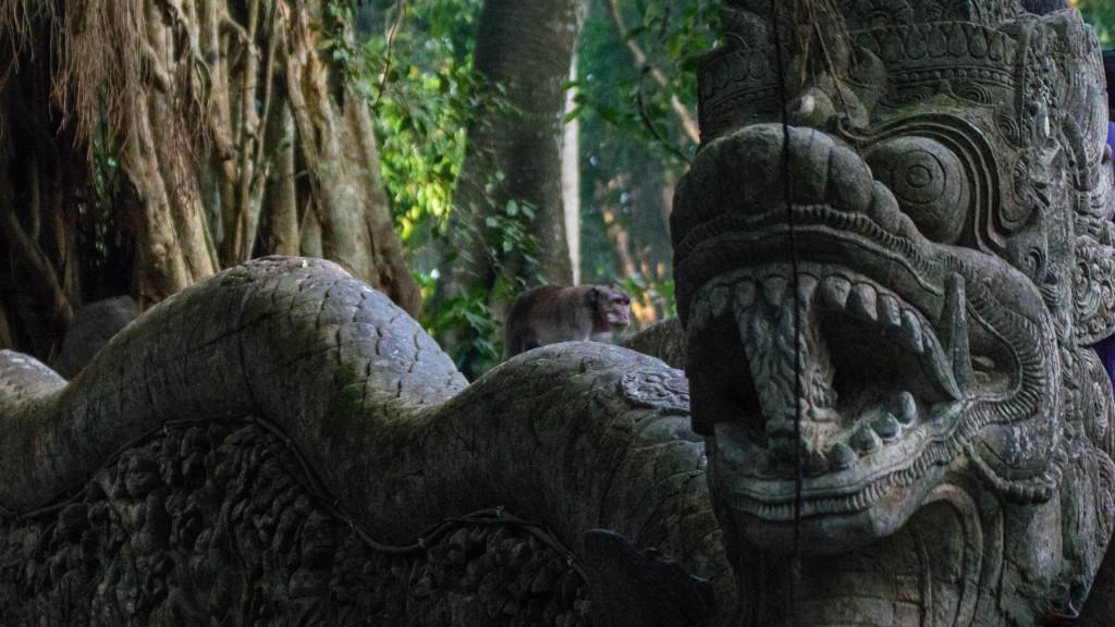 Fins to Spurs, Ubud, Bali, Monkey Forest, Monkey and Dragon Bridge