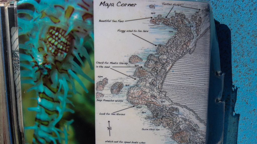Dive Map, Fins to Spurs, Diving in Ao Nang, Thailand