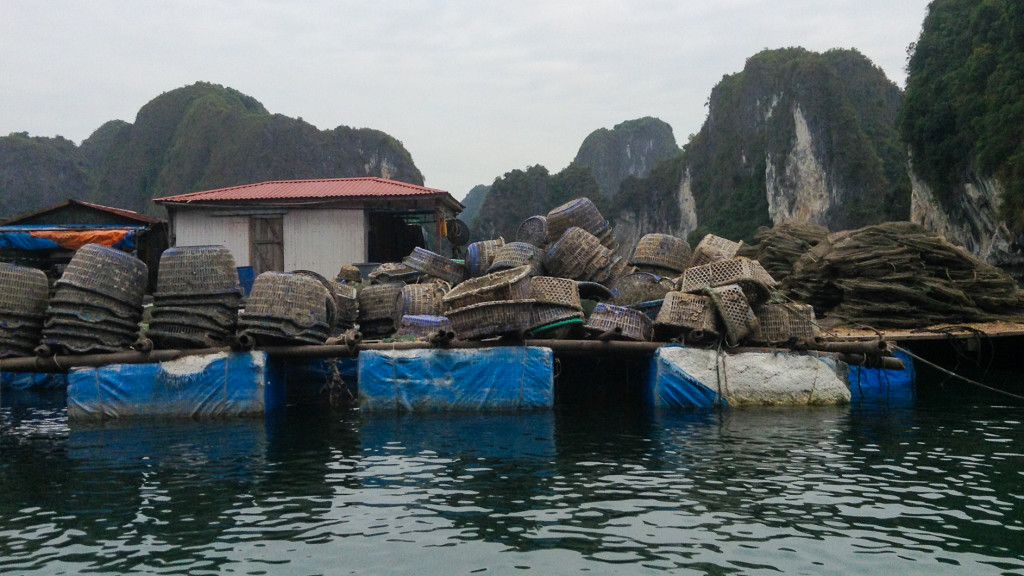 HaLong Bay, Floating houses, Baskets, Fins to Spurs, Cat Ba, Vietnam