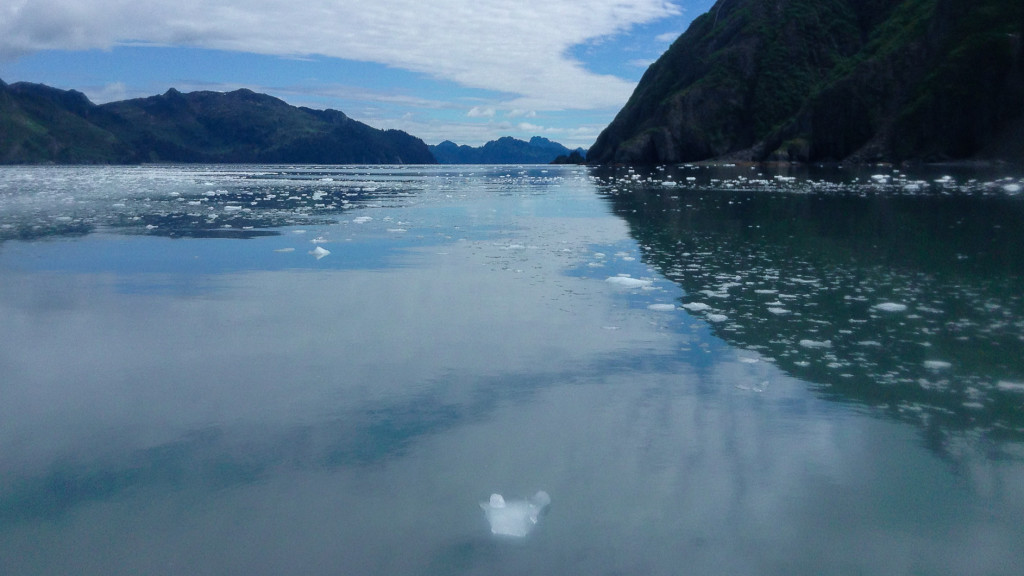 Glacier, ice chunks, Work in Alaska, 11 Jobs that Pay You to Travel, Fins to Spurs, Kenai Fjords