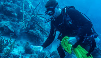 OCEAN CLEANUP IN BONAIRE: MAKE A DIFFERENCE ON VACATION!