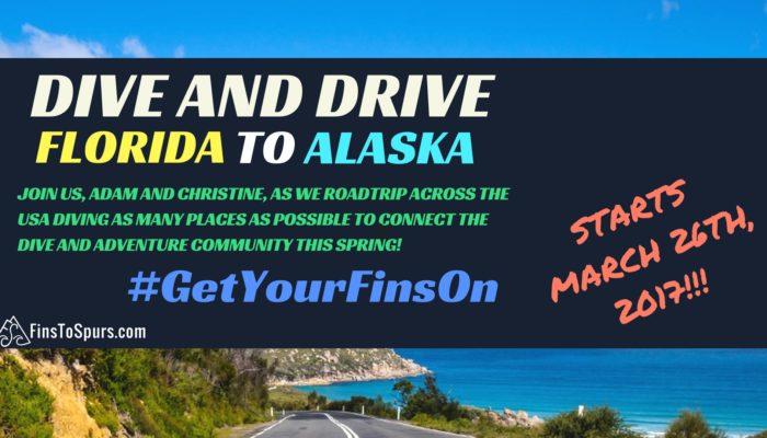 DIVE AND DRIVE USA: ROADTRIP TO ALASKA!